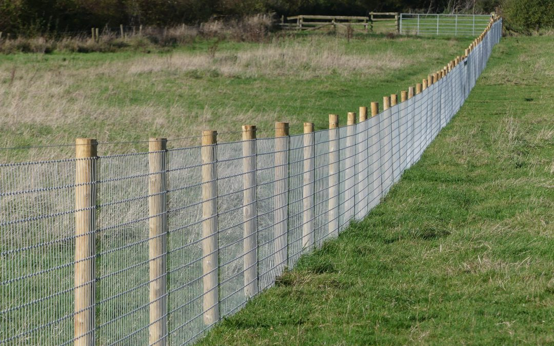 Woodland Fencing – Your Questions Answered